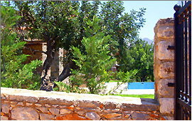 Villa (1) - Swimming pool and terrace