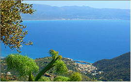 Agia Galini: View from the road to Melambes
